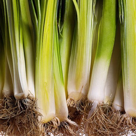 yellow leeks